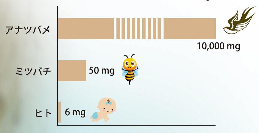 唾液の比較